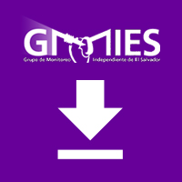 Methodology to verified codes of conduct complience – GMIES – May, 2000
