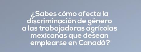 Conferencia de Prensa: ¿Sabes cómo afecta la discriminación de género a las trabajadoras agrícolas mexicanas que desean emplearse en Canadá?