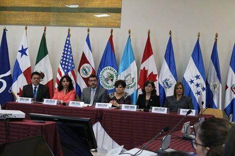 """Taller regional de capacitación técnica para la protección integral de la niñez y adolescencia en el contexto de la migración"""""""